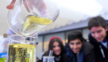 Quinta versión de Feria de Ciencias UAI convocó a más de 500 escolares