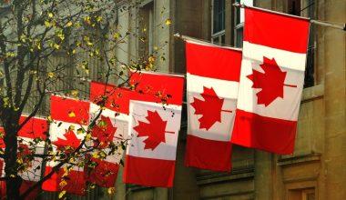 Alumnos de Ingeniería obtienen beca para realizar estudios en Canadá