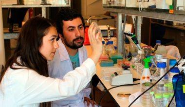 """Tammy Atallah: """"Me gusta desarrollar ideas y soluciones mediante la Biología"""""""