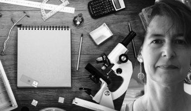 Rigor, curiosidad y sensibilidad social para investigar
