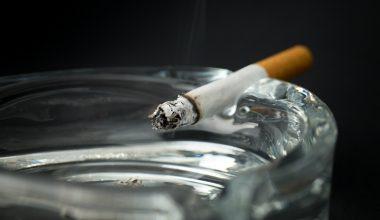 Guillermo Paraje es premiado por la OMS por su aporte en la lucha contra el tabaco