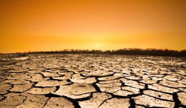 """Verónica Devenin: """"Celebrar la COP 25 en Chile nos obliga a asumir un mayor protagonismo con nuestro desarrollo futuro"""""""