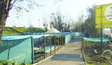 EcoParque UAI-Peñalolén ofrece talleres gratuitos para este verano