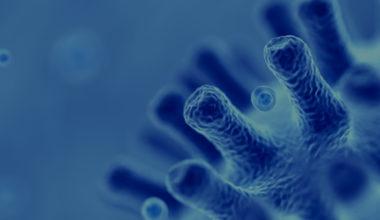 Protocolo ante el Coronavirus