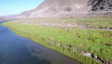 Mercado del agua y resiliencia socioecológica ante la escasez: un análisis a la cuenca del río Limarí