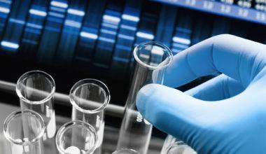 Acuerdo en I+D con EMPA: Colaboración para la investigación internacional