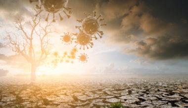 Los desafíos del cambio climático