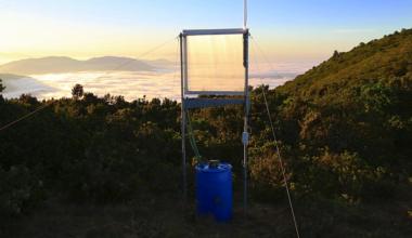 Atrapar la niebla para enfrentar la escasez hídrica