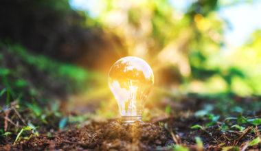 Sostenibilidad: el nuevo paradigma