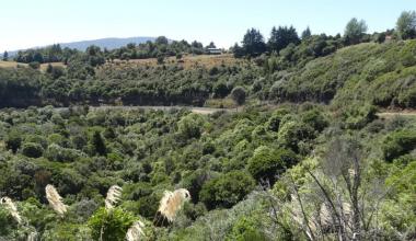UAI se adjudica proyecto Fondef para la preservación de áreas de relevancia ambiental